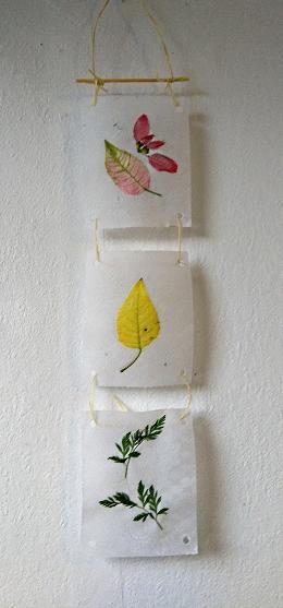 Herbier mural png 1